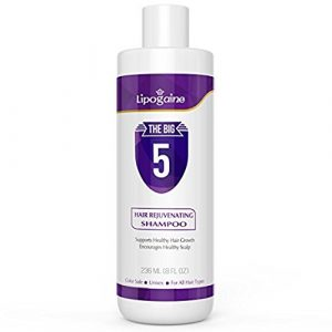 lipogaine big 5 anti chute cheveux