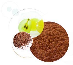 extrait de pépin de raisin sur cheveux